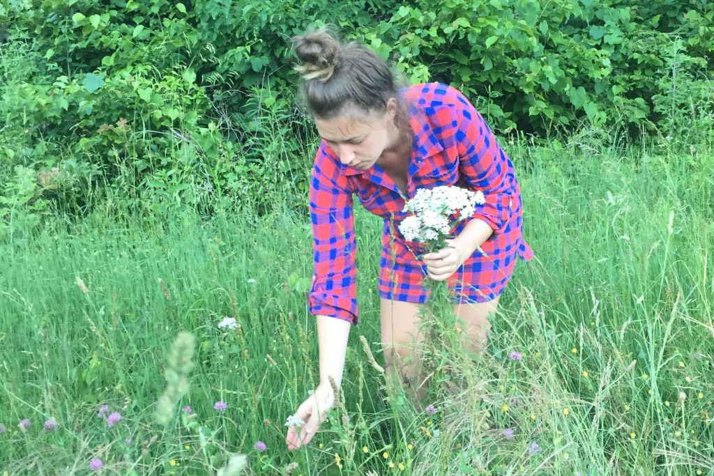 Megan Cox picking yarrow for Amalie's products.