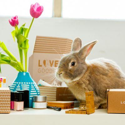 Artisan Marketplace Novica Acquires Beauty Subscription Box Company Love Goodly