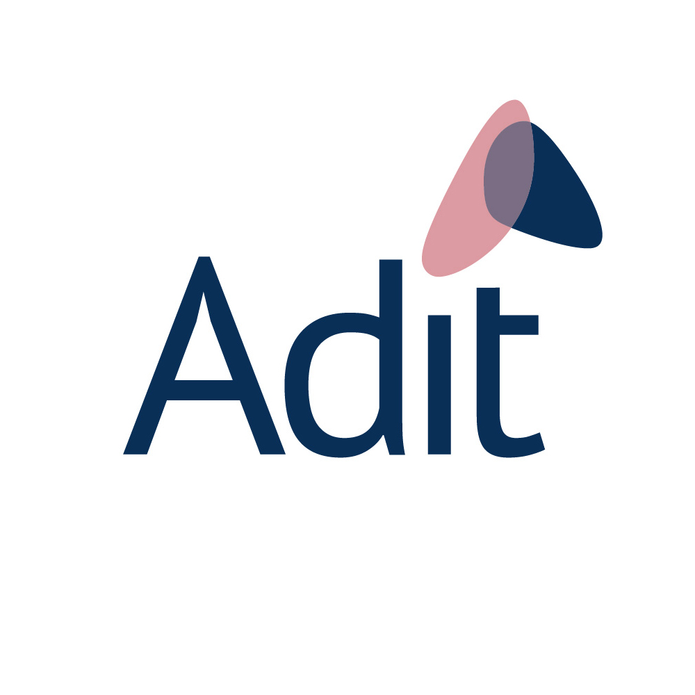 IBMG's New Adit Service Positions Brands For Success At Major Retailers